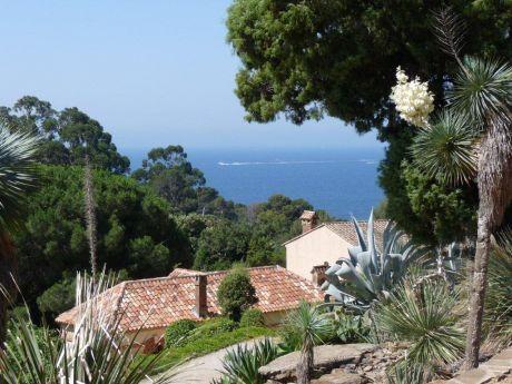 Domaine du rayol le jardin des m diterran es parcs et - Domaine du rayol le jardin des mediterranees ...