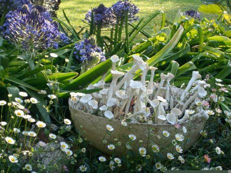 jardin des fleurs de poterie parcs et jardins paca. Black Bedroom Furniture Sets. Home Design Ideas