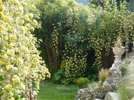 Jardin des fleurs de poterie parcs et jardins paca for Fleurs et jardins