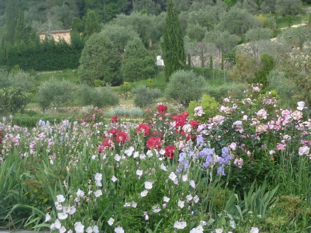 Les jardins du mus e international de la parfumerie parcs et jardins paca - Jardin du musee international de la parfumerie ...