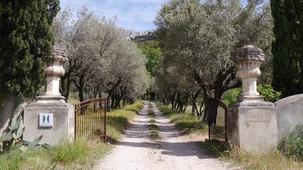 Domaine d'Orvès, jardin remarquable