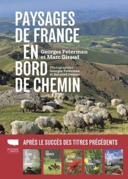 Paysages de France en bord de chemin