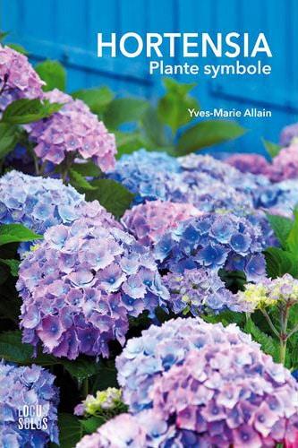 Hortensia, plante symbole
